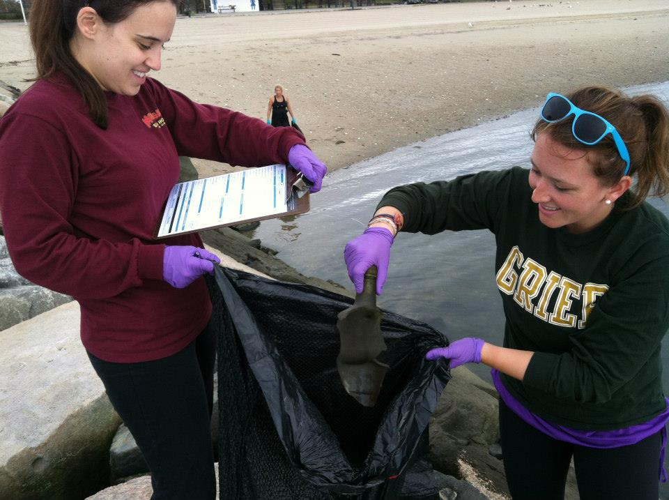 JLSN Members log items collected from Stamford beaches during an event with International Coastal Cleanup